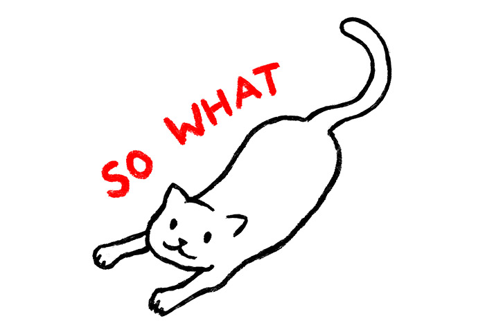 """An outline of a happy cat with a red text """"So What"""" above it."""