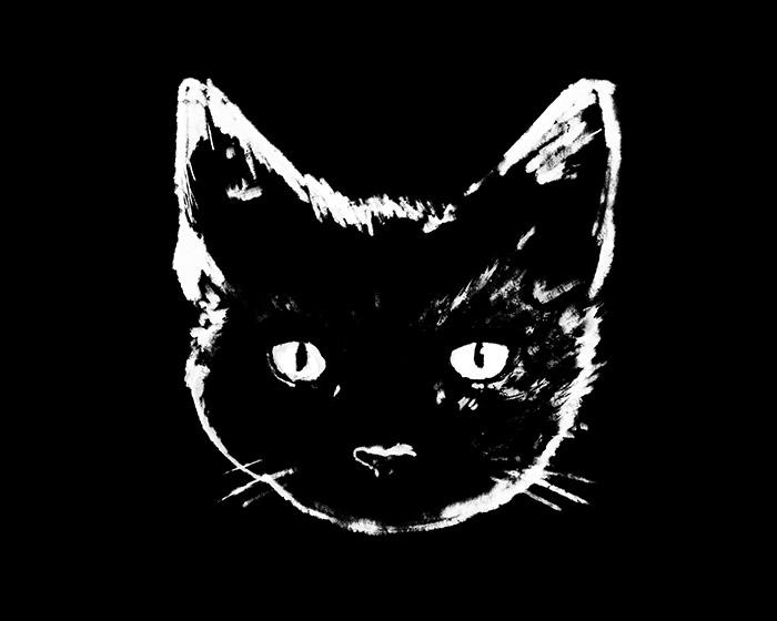 Black Cat - design by Justyna Dorsz